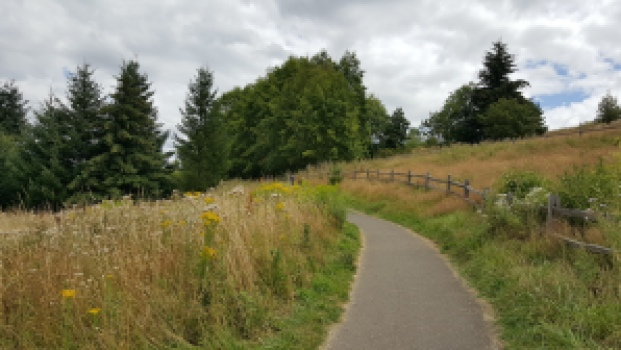 nature walk: Powell Butte